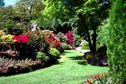 Landscaping Landscape Design Incline Village Lake Tahoe Reno Carson City Nv